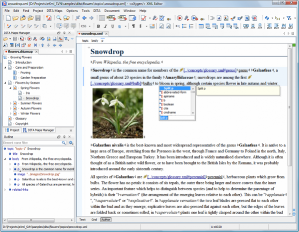 Oxygen XML Editor 19.4.1 Crack Serial Key FREE Download